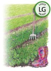 Cover Crop Soil Builder Peas/Oats Organic HEIRLOOM Seeds (LG)
