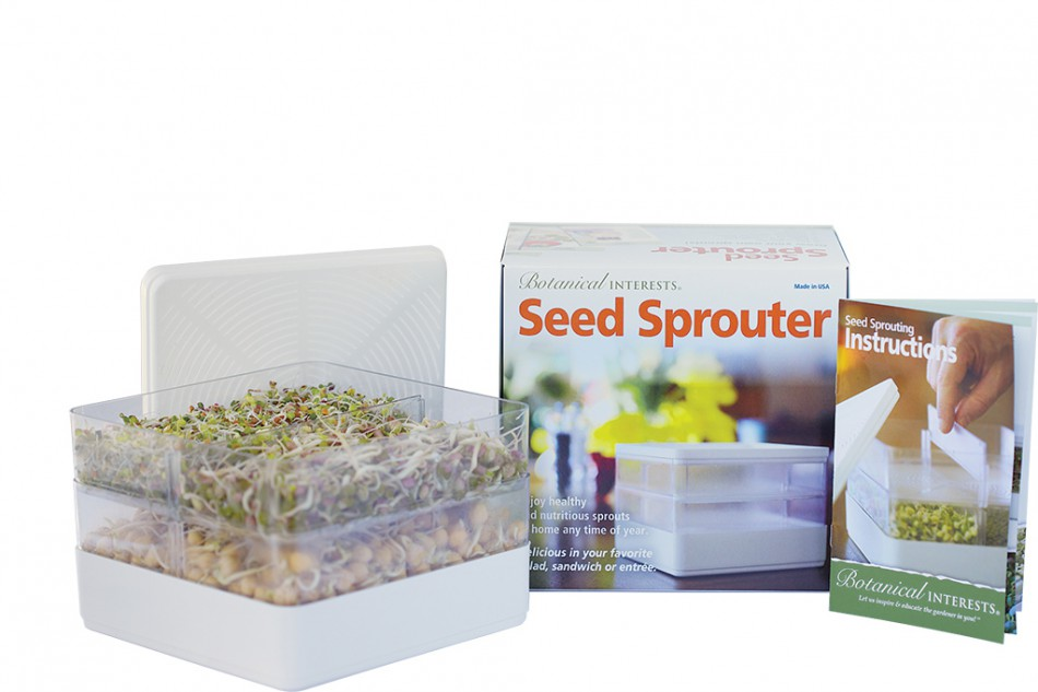 Sprouting Seeds at Home: Disinfecting, Growing, and Harvesting Tips